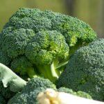 come eliminare l'odore dei broccoli - Myitalian.recipes
